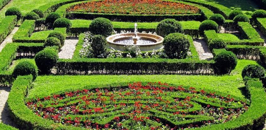 Английский сад - фото