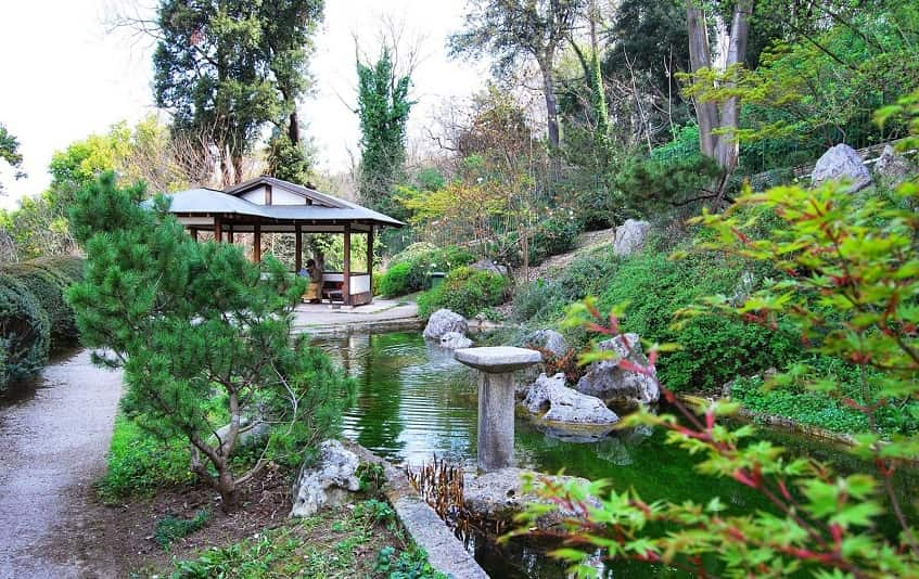 Ботанический сад - фото