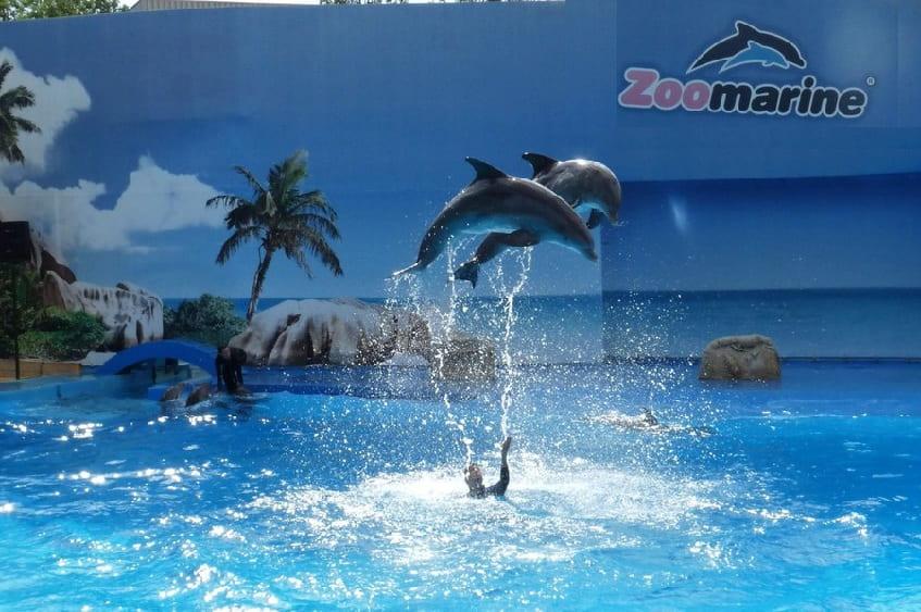 Zoomarine Italia (Водный тематический парк) - фото