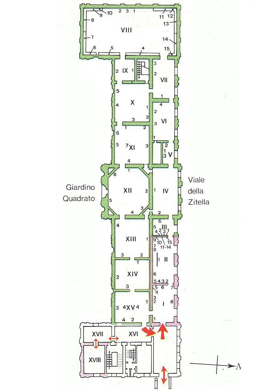 Расположение залов пинакотеки - схема
